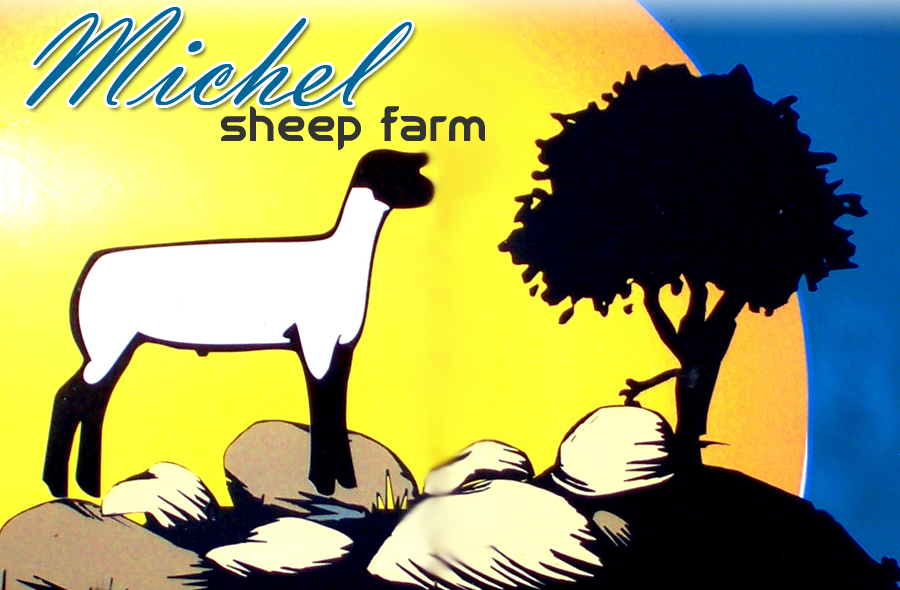 Michel Sheep Farm