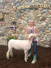 Michel Sheep Farm : Winners